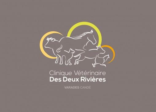 logotype clinique vétérinaire charte graphique magaliac